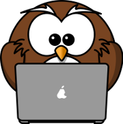 Sowa, która przechodzi Internetowy kurs angielskiego od podstaw na laptopie